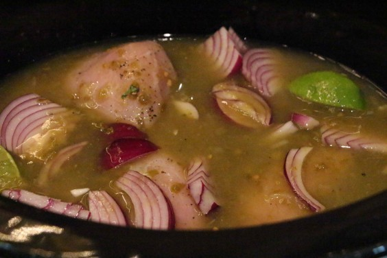 salsaverdeckn1