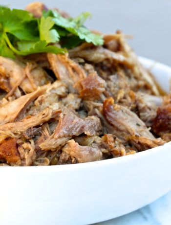 Apple Cider Vinegar Pulled Pork